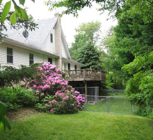 hop-back yard bushes